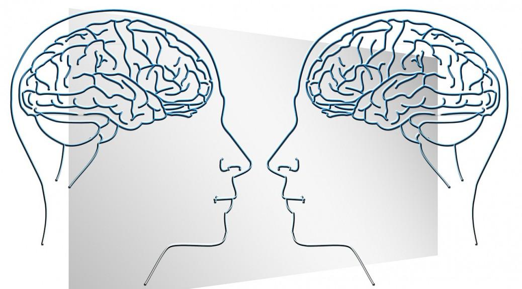 Brain intellectual face-535761_1280