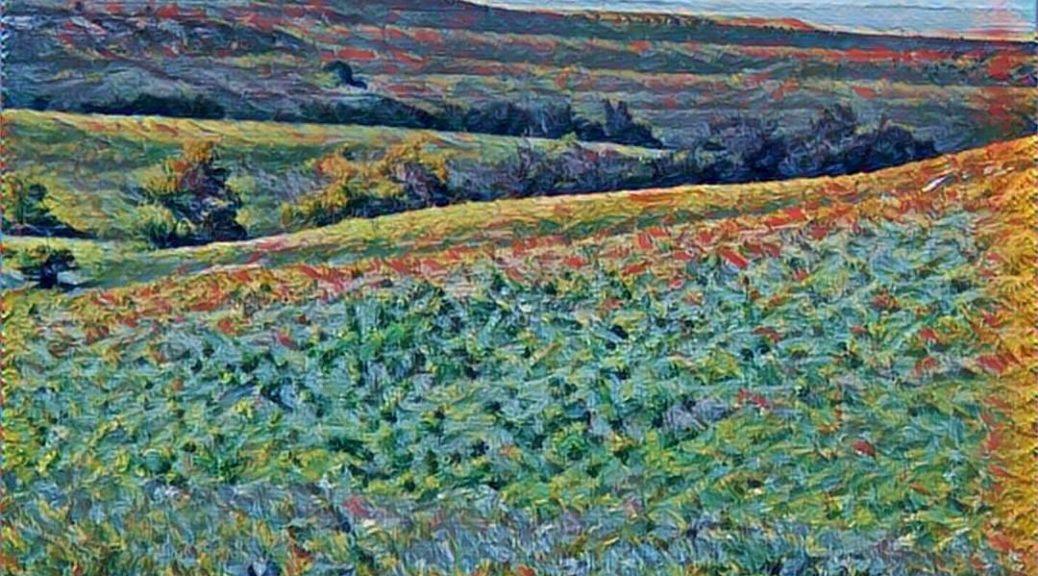 Kansas Flint Hills (Bob Weeks) 04