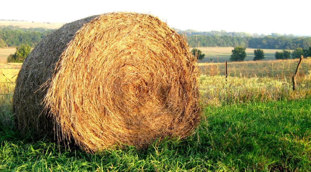 kansas-farm-hay