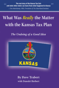 What is the matter with kansas book